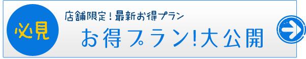 お得プラン大公開!